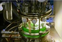 algae bioreactor, algae cultivation, Close-Up Engineering