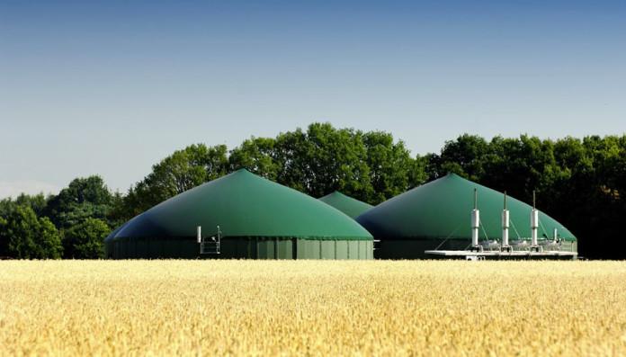 Biogas, produrre energia da deiezioni animali, Close-up Engineering