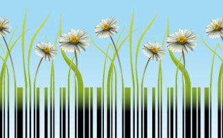 acquisti pubblici verdi