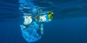 Plastic Bank: la plastica diventa denaro