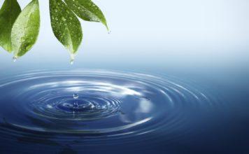 acqua, natura, dieta, cibo, carne, verdura, pesce, energia, Energy Close-up Engineering