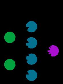fusione, fusione nucleare, iniettori di atomi neutri, SPIDER, ITER, STRIKE, fascio di D-, reti neurali artificiali, neuroni, immagini termografiche, FFT e PCA, ricostruzione uscita, Consorzio RFX, Padova, Italia, Energy Close-up Engineering