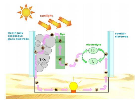 fotovoltaico-celle-elettrochimiche-gratzel-fotone-scarti-vinificazione-vino-vinitaly-cafoscari-università
