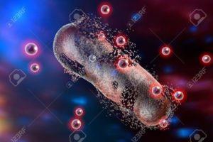 Polifenoli, chimica, Medicina, riciclo, ambiente, frutta, innovazione, nanoparticelle, argento, economy, Energy Close-up Engineering