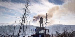 Incendio in Siberia: hell e neve nera, brucia la foresta