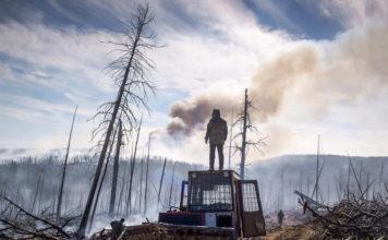 Siberia, incendio, foresta, hell, neve nera, ghiaccio, neve, Russia, incendi, fiamme, emissioni, Alaska, Stati Uniti Canada, Energy Close-up Engineering