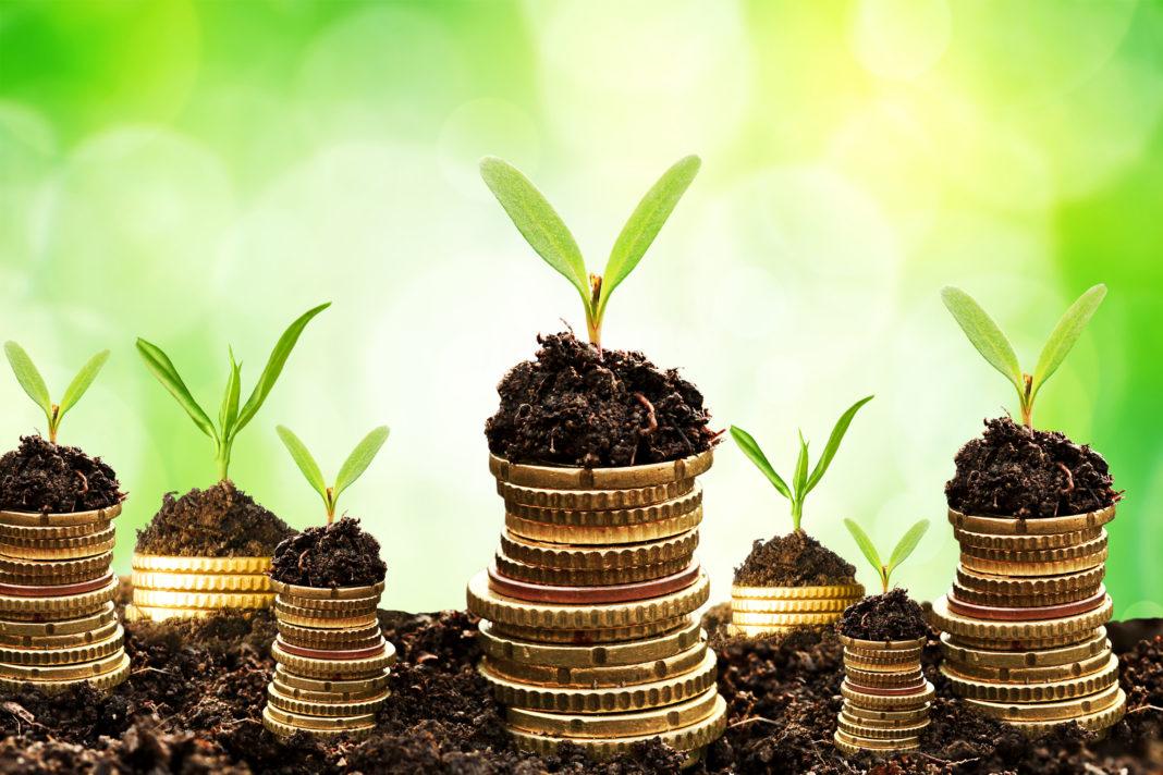 Crescita verde, sostenibilità ambientale, sviluppo economico, European Environmental Bureau, consumi energetiche, prestazioni energetiche, Energy Close-up Engineering