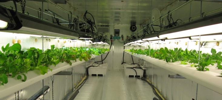 Aeroponica, ambiente, impianti, risparmio energetico, risorse, piante, agricoltura, impatto ambientale, innovazione, rinnovabile, nutrimento, Energy Close-up Engineering