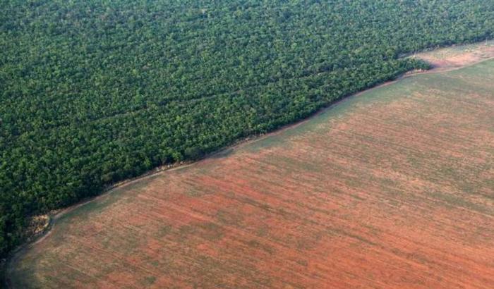 bioetanolo, seconda generazione, land use change effect, emissioni, CO2, biocombustibili, economia, chimica, Brasile, mais, Energy Close-up Engineering