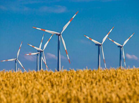 energia,verde,solare,eolica,politica,tecnologia,web,netbet,casino,rinnovabile,sensibilità,EnergyCuE