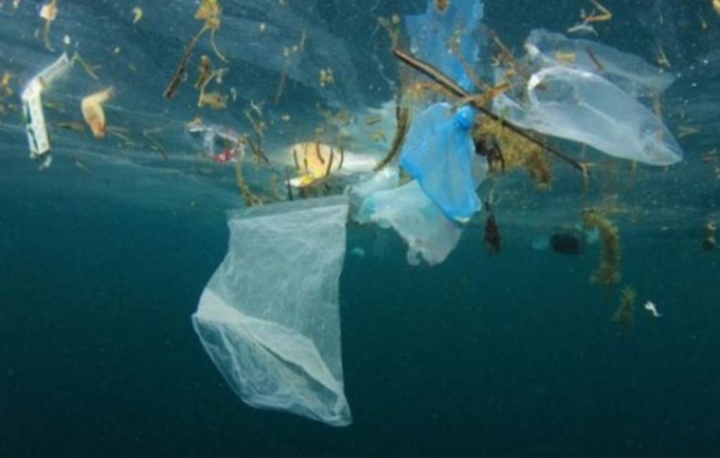 rifiuti, plastica, normativa, Europa, divieti, controlli, inquinamento, ambiente, trasparenza, mari, gestione, responsabilità, news, obiettivi, Energy Close-up Engineering.