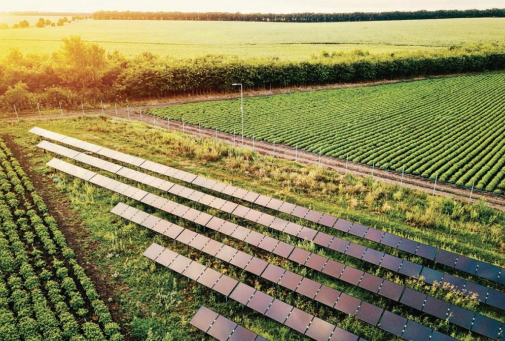 fotovoltaico, sole, agricoltura, energia, produzione, suolo, sostenibilità, sfruttamento, tecnologia, efficienza, sviluppo, consumo, elettricità, applicazioni, colture, allevamenti, Energy Close-up Engineering