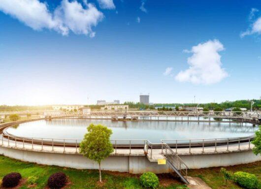 Dalla biomassa alle nanoparticelle per depurare l'acqua