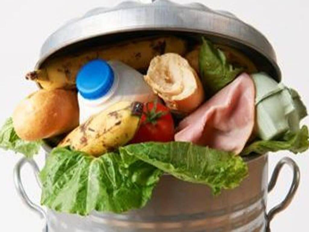 Food waste, Food loss, prevenzione, spreco, cibo, pirolisi, gassificazione, biocombustibile, acqua, ambiente, PCI, biodiesel, obiettivi, Europa, UNEP, Energy Close-up Engineering.