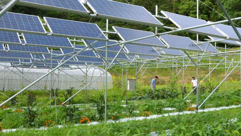 EGP, ENEA, agrivoltaico, algovoltaico, fotovoltaico, microalghe, PNRR, PNIEC, Energy Close-Up Engineering