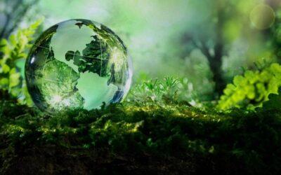Ambiente e sostenibilità: la sfida industriale per il futuro