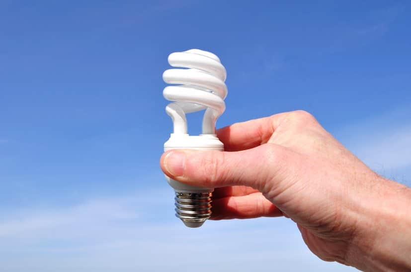 lampade,cfl,agricoltura,serra,efficienza,energetica,innovazioni,rinnovabili,energia,vendita,EnergyCuE