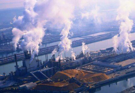 Inquinamento zero entro il 2050: ecco la nuova strategia UE
