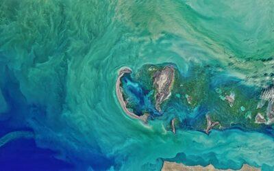 Microplastiche: individuazione satellitare grazie ai dati NASA