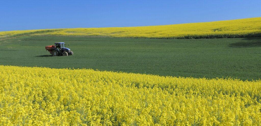 Agricoltura, biologico, CO2, Italia, Energy Close Up Engineering