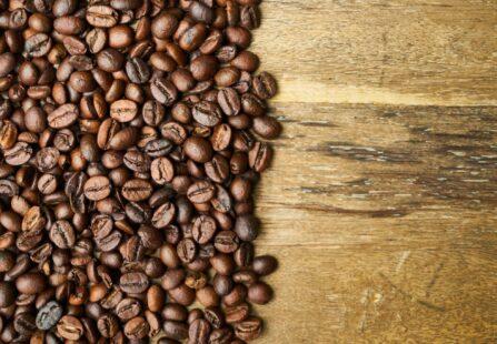 Pellicola del caffè: materiale innovativo per pannelli isolanti