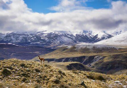 eFuels: nuovo progetto in Cile per produrre biocarburanti
